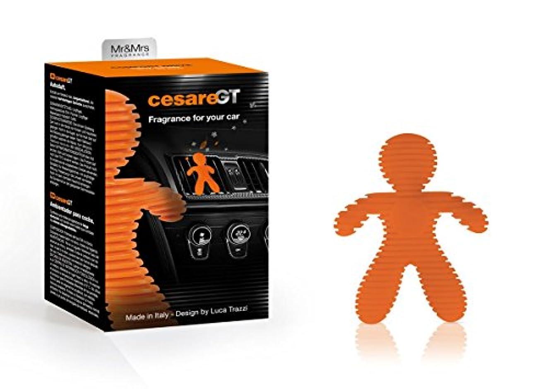 平方資格発生器Mr & Mrs Cesare GT Fragrance車のために快適ドライブSpicy Woody (オレンジ)