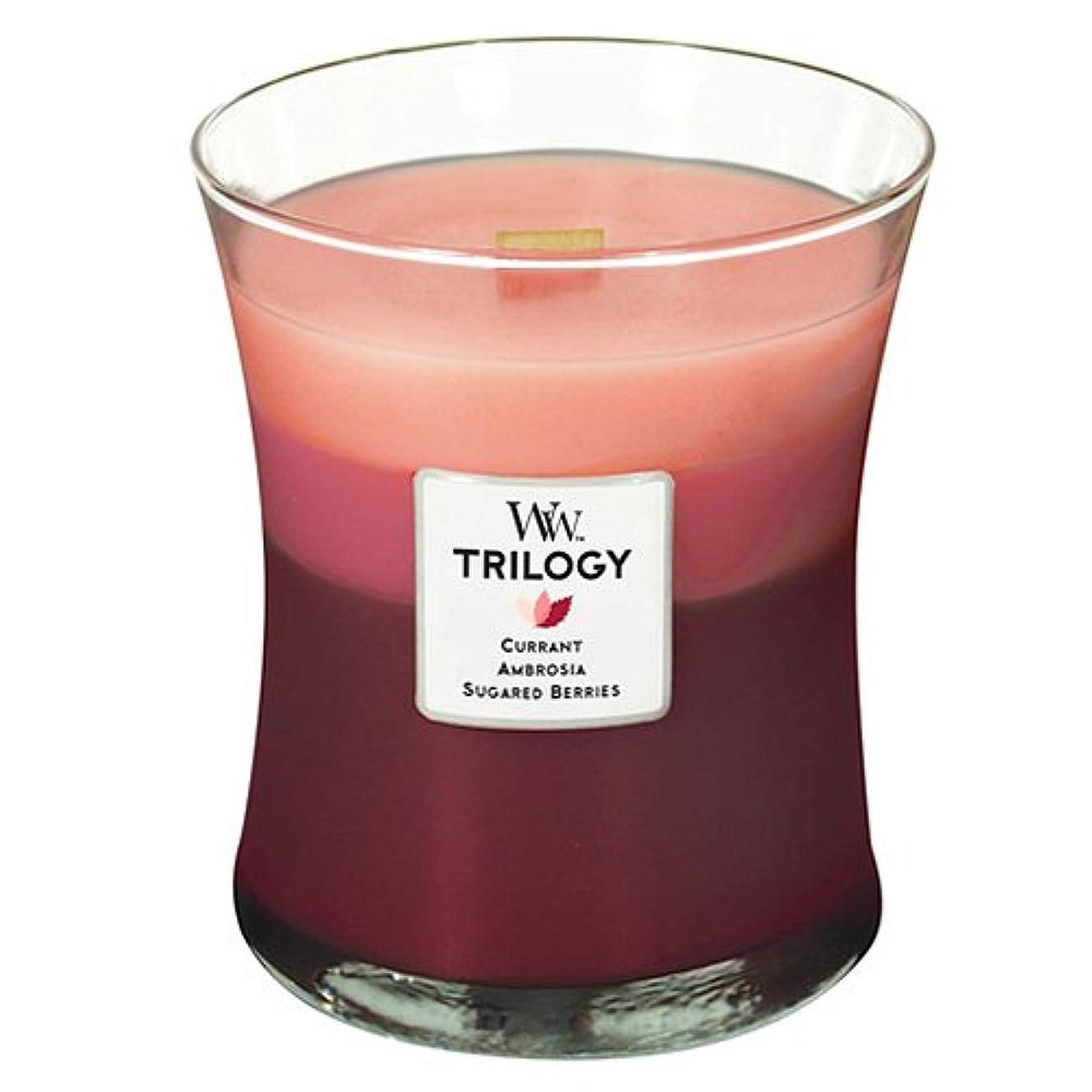 有効入植者革命Woodwick Candleフルーツ誘惑Trilogy Medium Jar