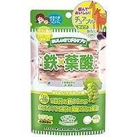 ジャパンギャルズSC おいしいおてがるサプリ 鉄×葉酸 150粒(約30日分)