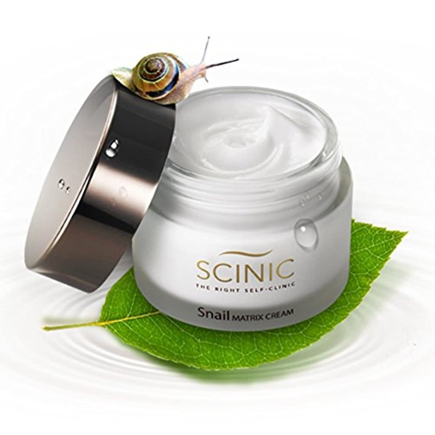 理想的には移行プレゼンテーションSCINIC Snail Matrix Cream All Skin Types Women Hypoallergenic Moisture (50ml) [並行輸入品]