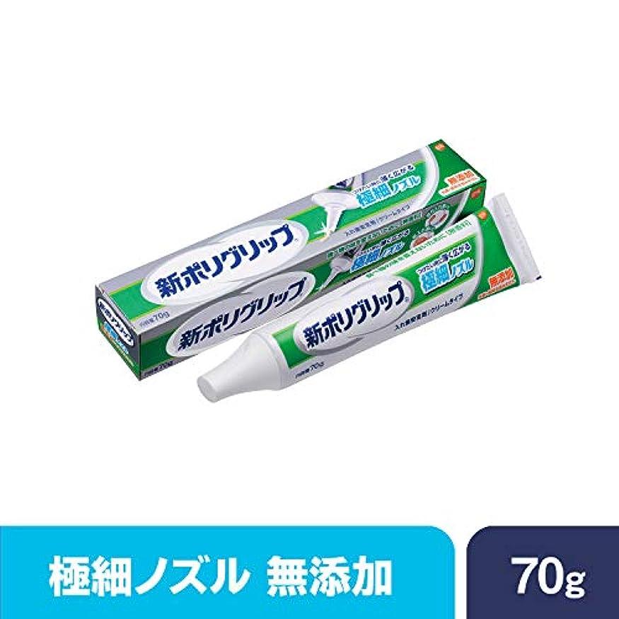 禁止する水星花に水をやる部分?総入れ歯安定剤 新ポリグリップ極細ノズル 無添加 70g