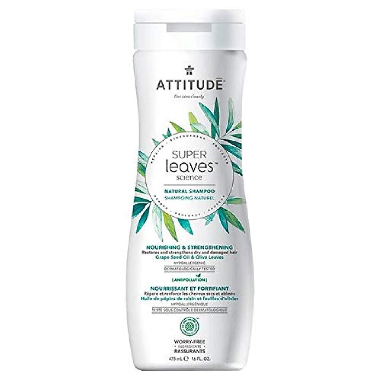 協力ポスター統計[Attitude ] 姿勢スーパーはシャンプー栄養&強化473ミリリットルの葉 - Attitude Super Leaves Shampoo Nourishing & Strengthening 473ml [並行輸入品]