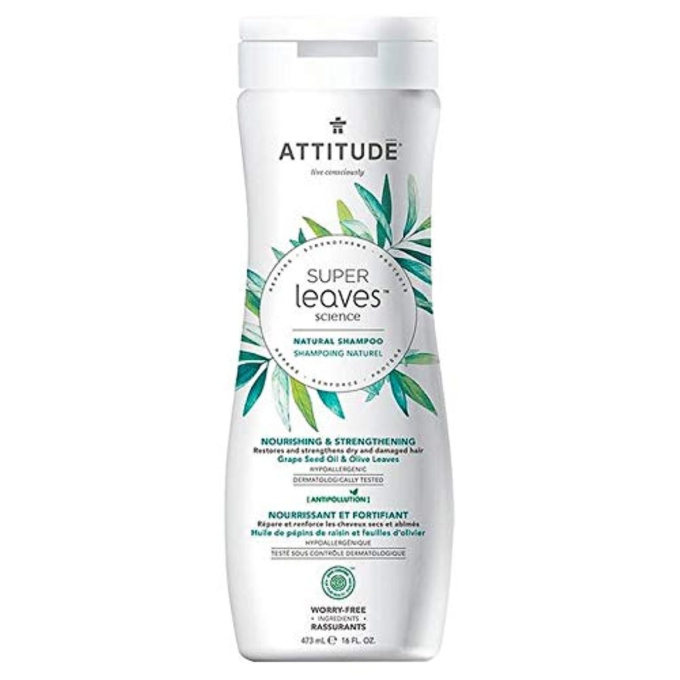 余暇の多くの危険がある状況[Attitude ] 姿勢スーパーはシャンプー栄養&強化473ミリリットルの葉 - Attitude Super Leaves Shampoo Nourishing & Strengthening 473ml [並行輸入品]