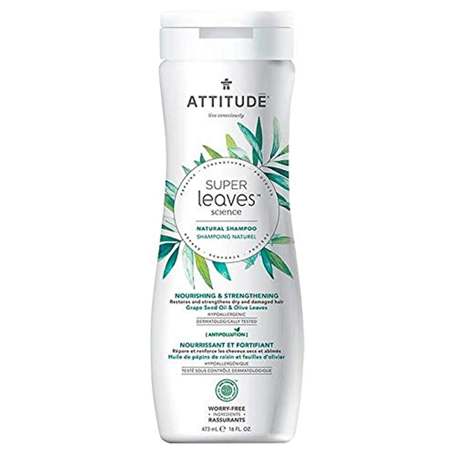 [Attitude ] 姿勢スーパーはシャンプー栄養&強化473ミリリットルの葉 - Attitude Super Leaves Shampoo Nourishing & Strengthening 473ml [並行輸入品]