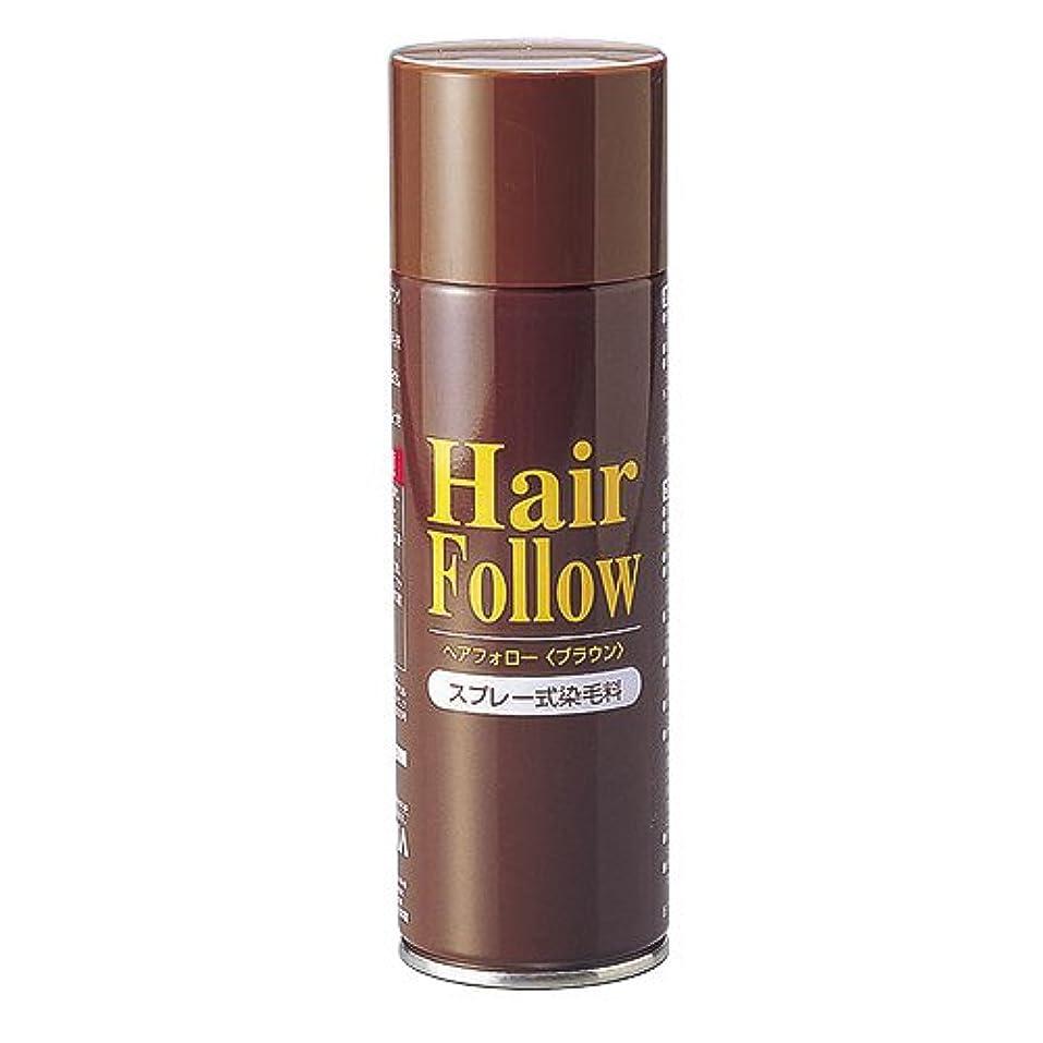 不器用雑多な貴重なヘアフォロースプレー ブラウン