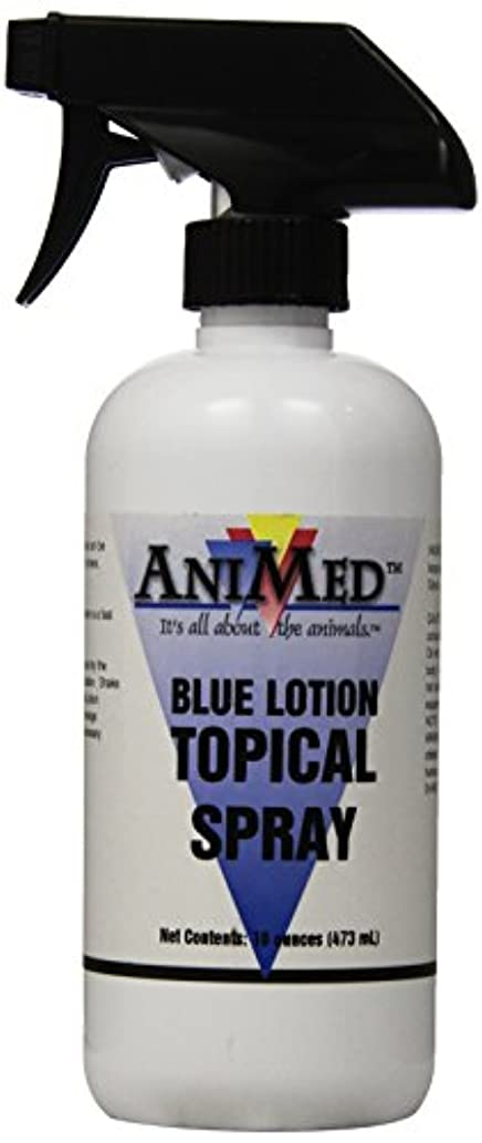 モード同志デコードするAniMed Blue Lotion Topical Antiseptic for Horses Dogs Cats Cows Sheep and Goats, 16-Ounce by AniMed