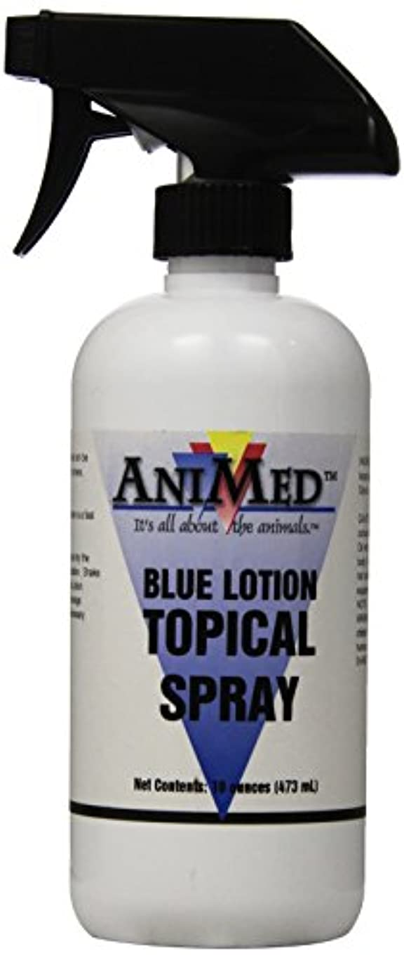 わずらわしい貸し手色合いAniMed Blue Lotion Topical Antiseptic for Horses Dogs Cats Cows Sheep and Goats, 16-Ounce by AniMed