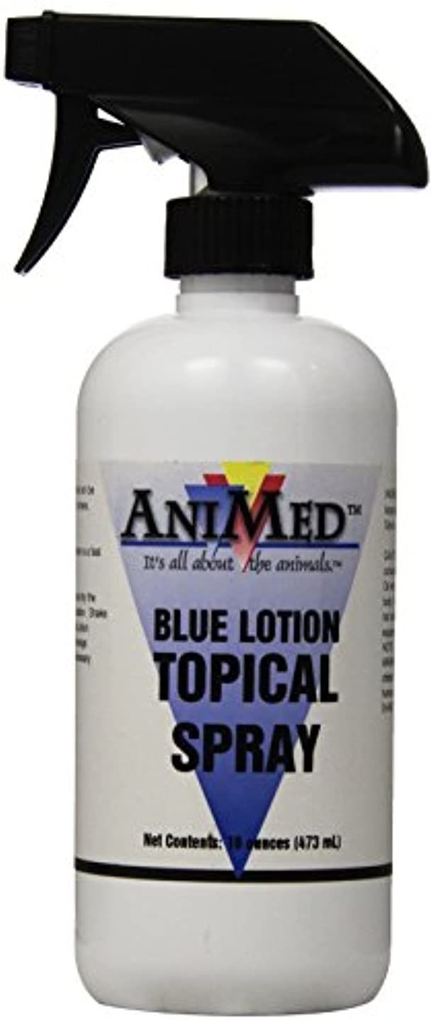 AniMed Blue Lotion Topical Antiseptic for Horses Dogs Cats Cows Sheep and Goats, 16-Ounce by AniMed