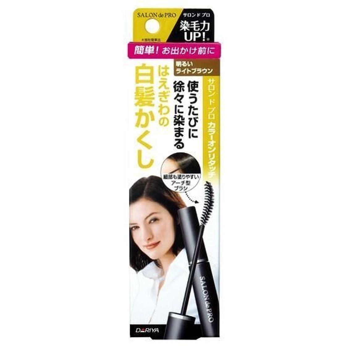何集まるステッチサロンドプロ カラーオンリタッチ 白髪かくしEX 明るいライトブラウン 15ml