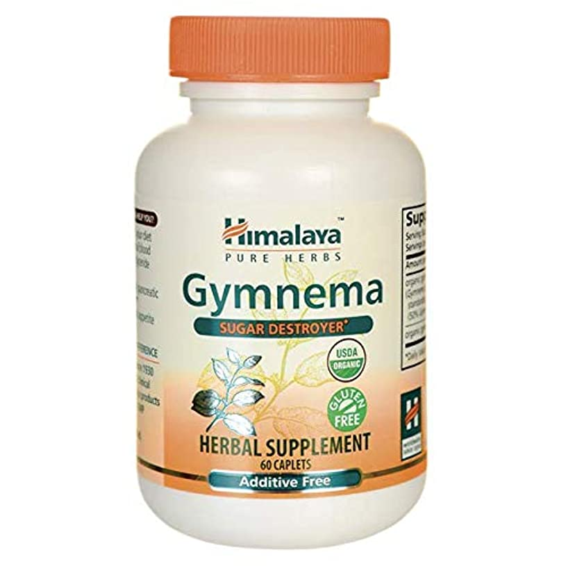 ミンチ病気注入Gymnema 60