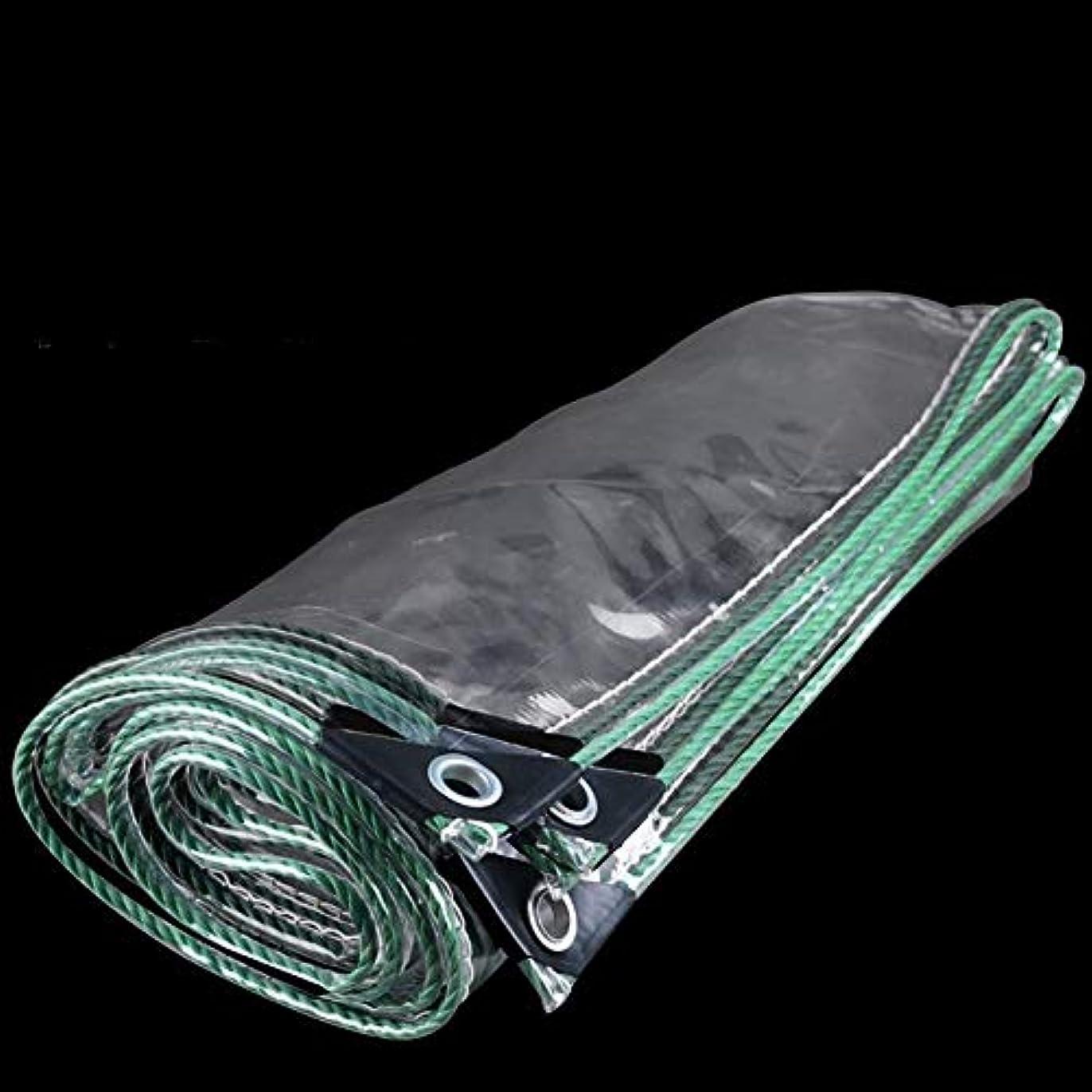 太陽盗賊木製Nwn 透明防雨布厚いポンチョターポリンバルコニーレインバイザー防水シート防水ターポリン屋外プラスチック布(450g /㎡) (サイズ さいず : 2x3m)