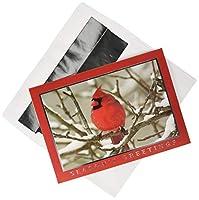 風景18のクリスマスカード、Cardinal、ボックス、by傑作Studios