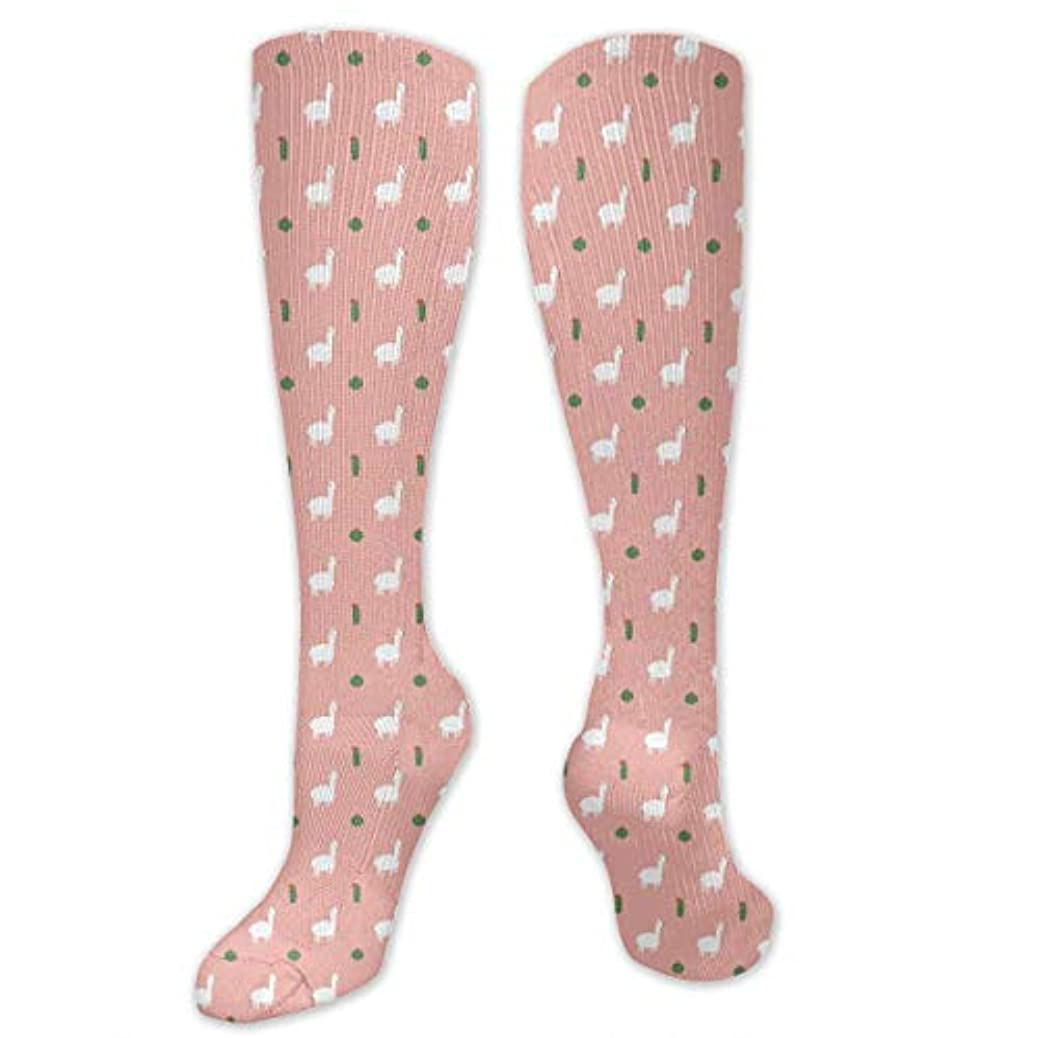 勧めるトイレ身元女性の男性のためのQrriy 3 D Kawaiiラマとカクタス圧縮靴下-ランニングスポーツスポーツクロスフィット飛行旅行妊娠看護婦(20-30 mmHg)