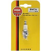 NGK ( エヌジーケー ) 一般プラグ 小型 (ターミナル一体形)1本ブリスターパック 【7874】 BM7A-1PK