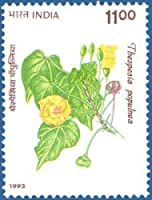 Flowers Flower - Thespesia Populnea Rs.11 Indian Stamp