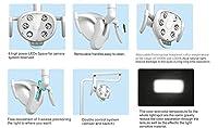 EZGO COXO 歯科手術用ライト・手術用照明器CX249-7 6本LED冷光