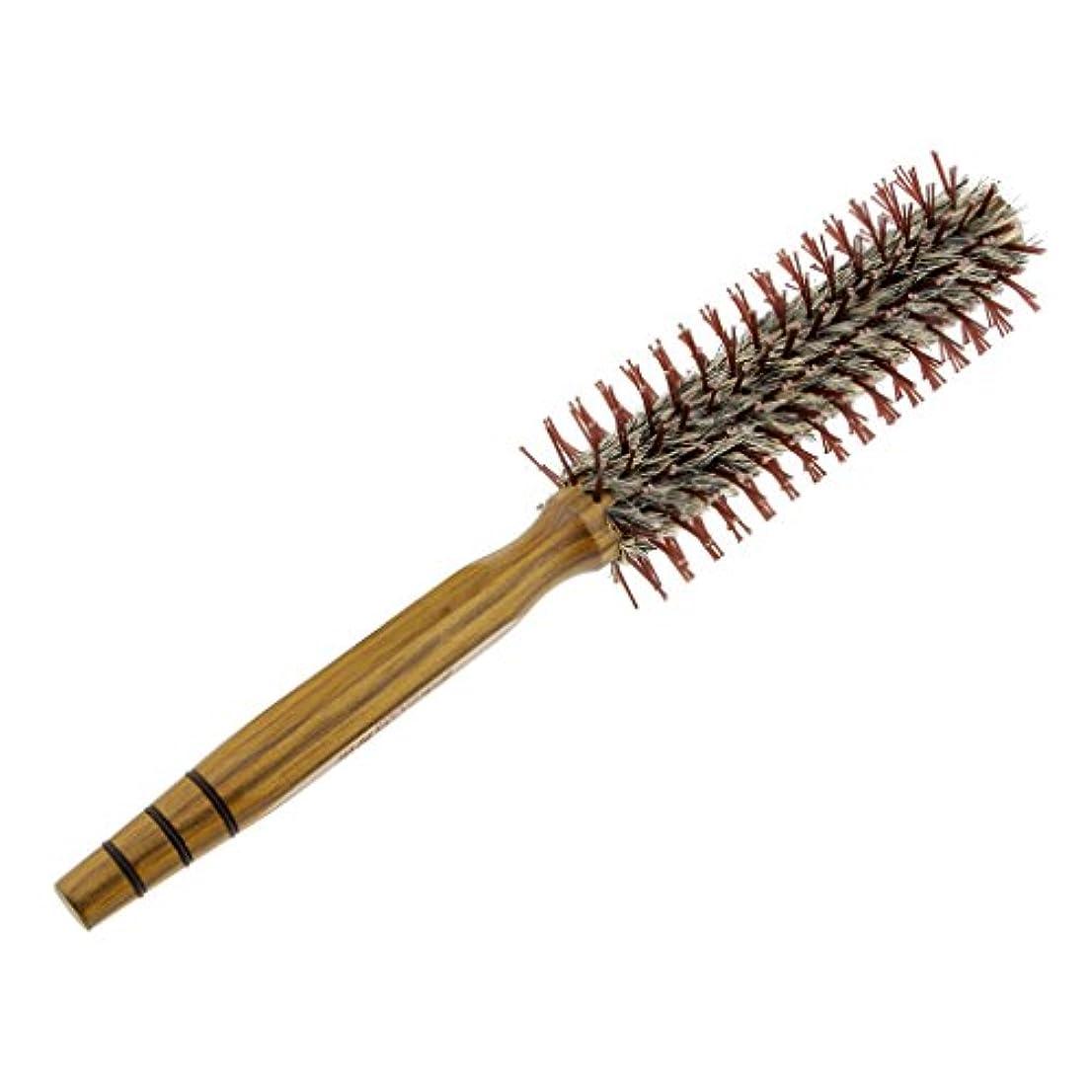 不忠動物園落ち着いてドレッシングの巻き毛のイノシシのブラシの櫛を様式化する木の円形のヘアブラシの大広間 - M