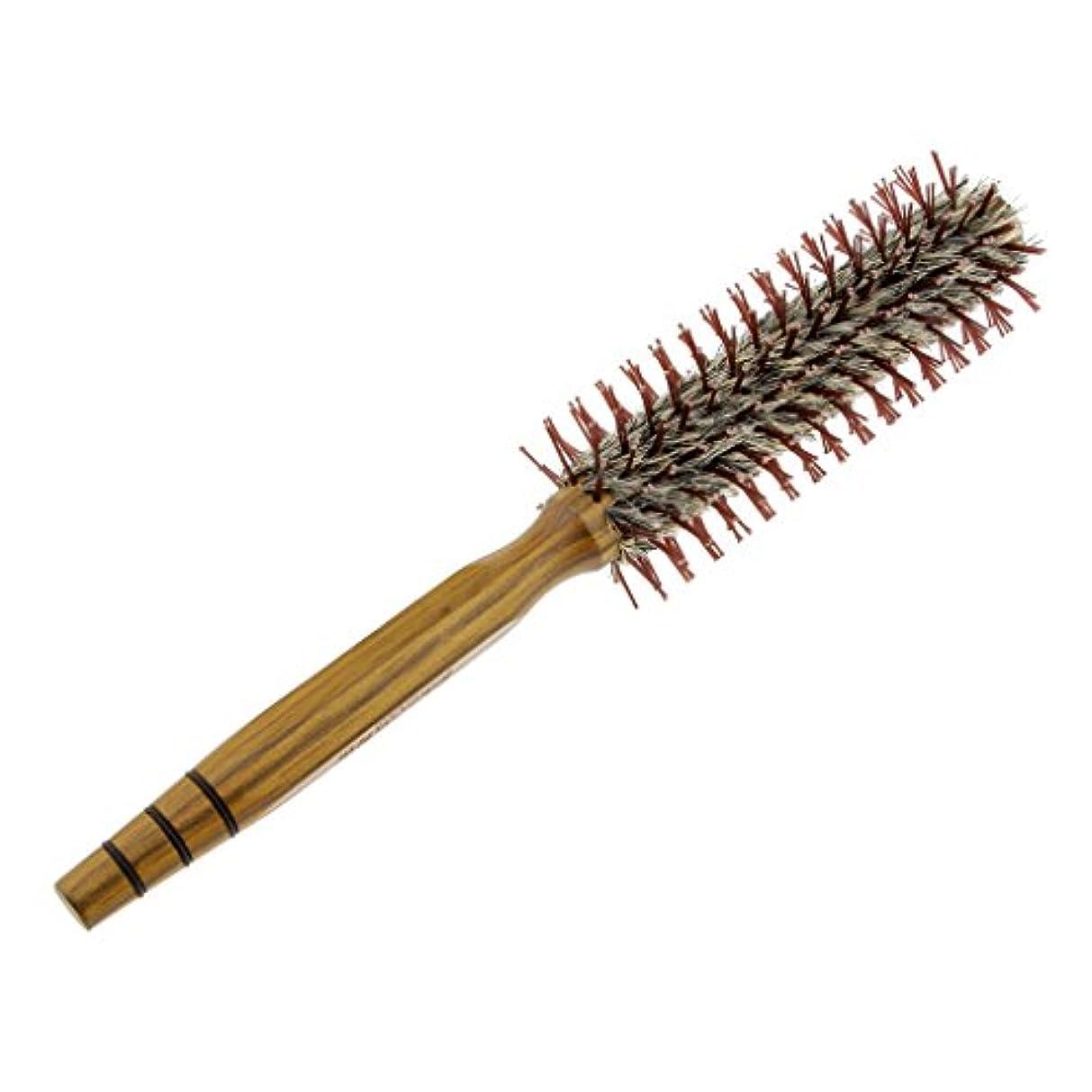作物高める年金T TOOYFUL ドレッシングの巻き毛のイノシシのブラシの櫛を様式化する木の円形のヘアブラシの大広間 - M