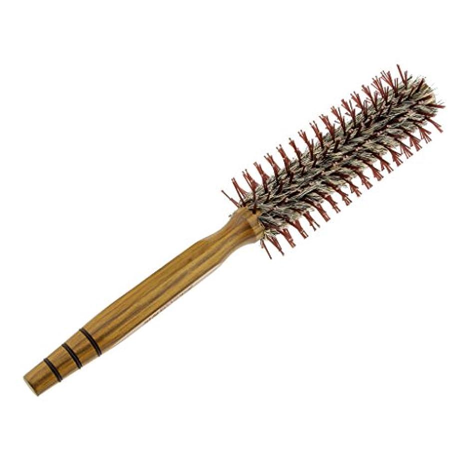 下手協同カメドレッシングの巻き毛のイノシシのブラシの櫛を様式化する木の円形のヘアブラシの大広間 - M