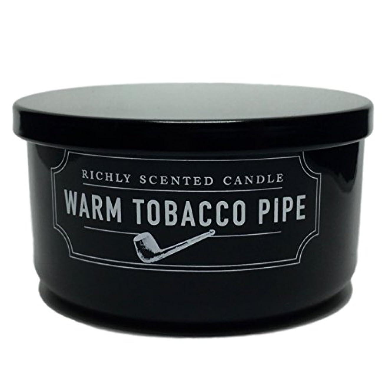 ワックス寝てる品揃えDWホーム暖かいタバコパイプ豊かな香り2 Wick Candle Smallサイズ