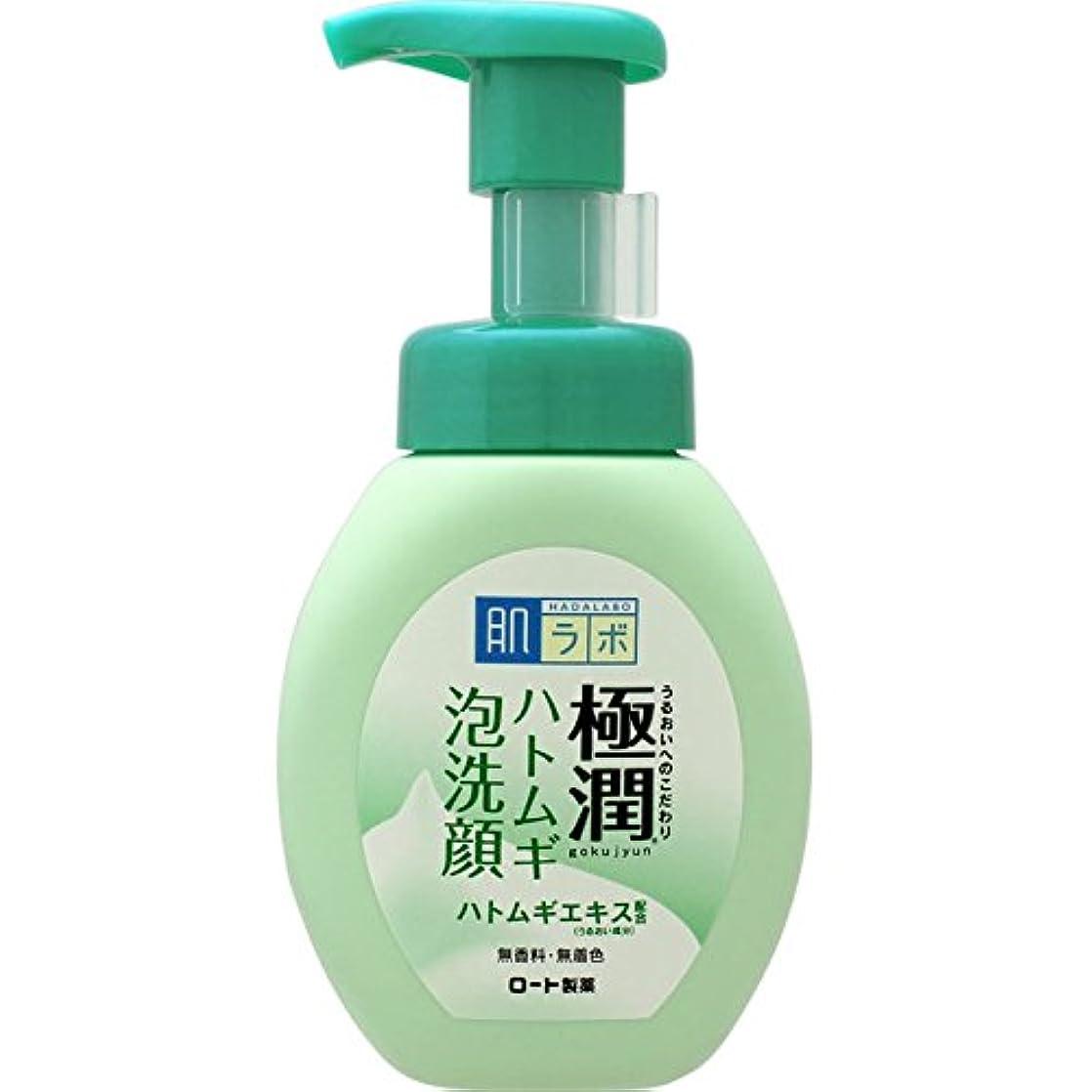 多様体塩辛い優先肌ラボ 極潤 毛穴洗浄 大人ニキビ予防 ハトムギ泡洗顔 160mL