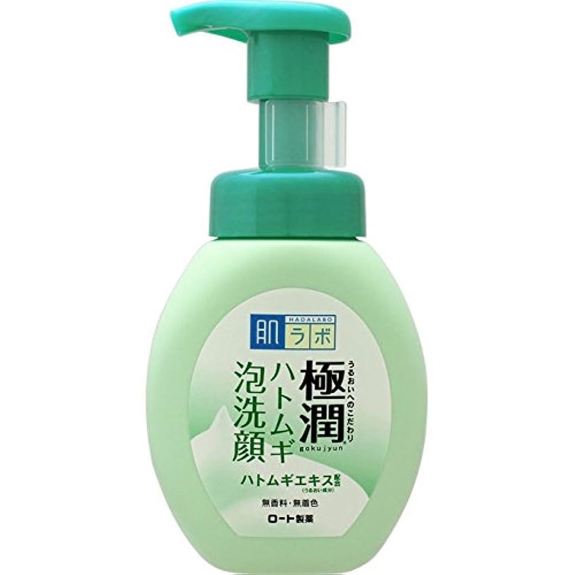 苦痛つかまえるファッション肌ラボ 極潤 毛穴洗浄 大人ニキビ予防 ハトムギ泡洗顔 160mL