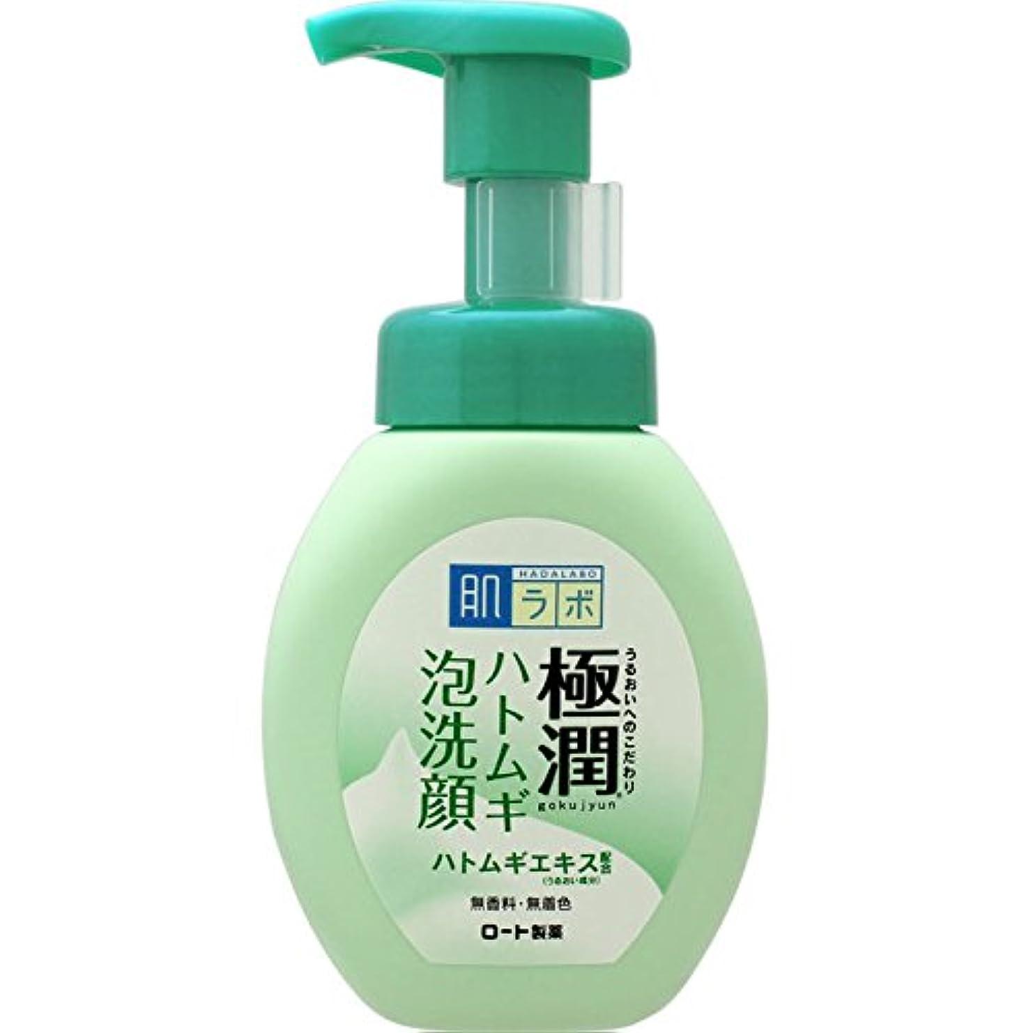 肌ラボ 極潤 毛穴洗浄 大人ニキビ予防 ハトムギ泡洗顔 160mL