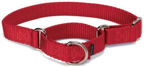 PetSafe『Martingale Collars(マルチンゲール カラーズ) Petiteサイズ』
