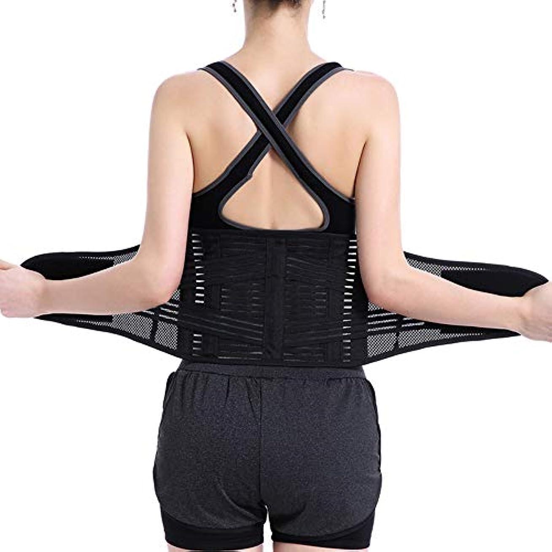 バックサポートベルト - 腰痛、坐骨神経痛、脊柱側弯症、椎間板ヘルニアまたは椎間板変性を軽減,S