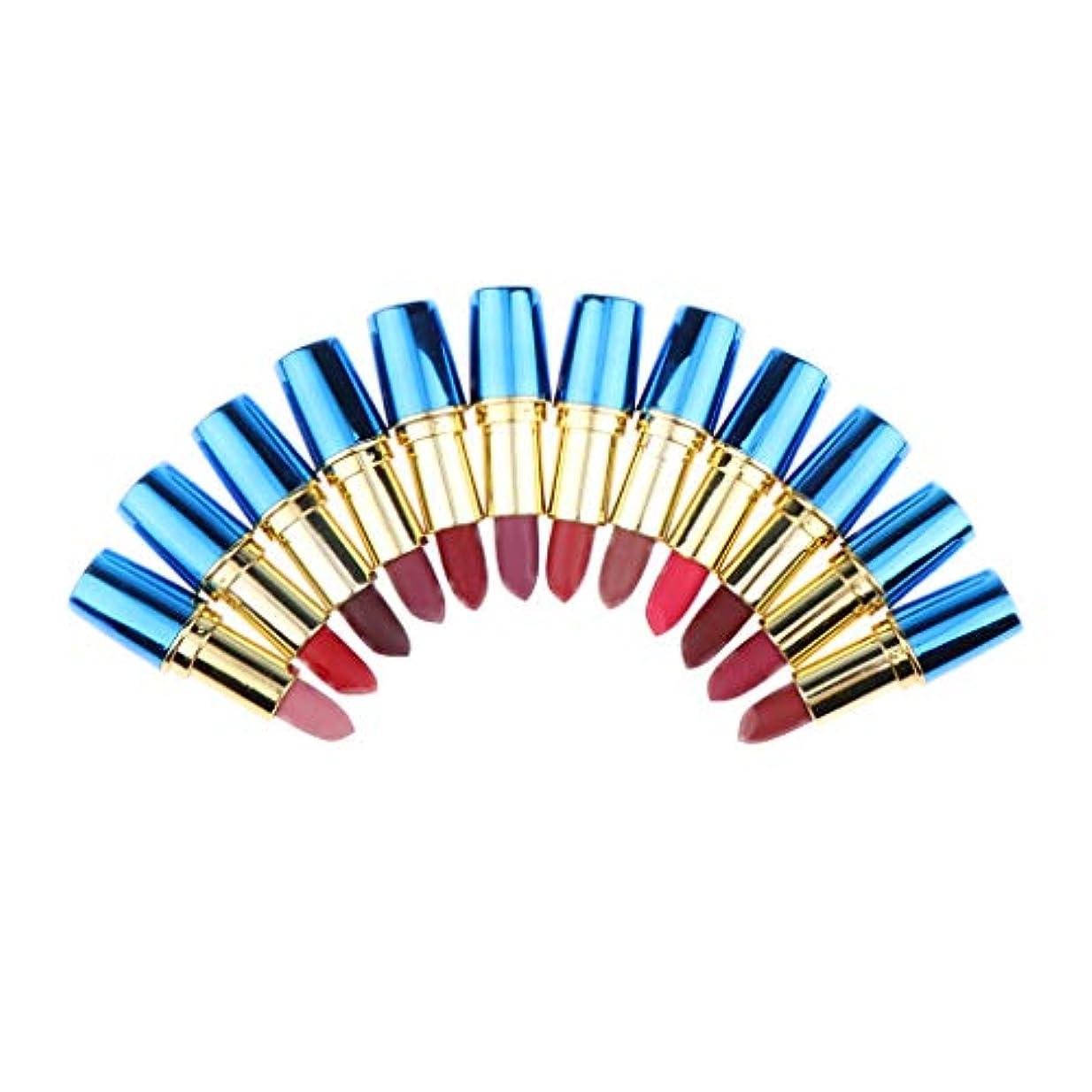 スライスおもしろい探検マットリップスティックセット 口紅 唇メイク 12色 交換部品