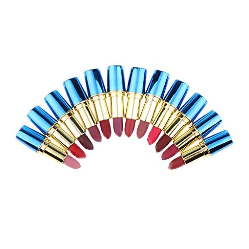修正傾いた新しさマットリップスティックセット 口紅 唇メイク 12色 交換部品