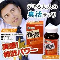マルマン 柿渋サプリ  【人気 おすすめ 】