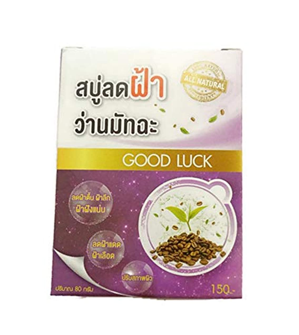 ビジュアル受粉するクリアAHA Coffee Aloe Green Tea Melasma Soap 80 grams.