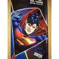 X-Kites Sky Diamond Poly 23 Kite - Superman by X-Kites [並行輸入品]