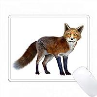 レッドフォックスを見て PC Mouse Pad パソコン マウスパッド
