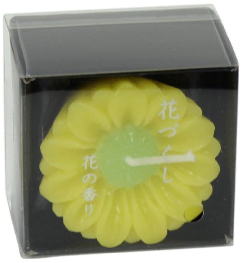 きらめき間違えた深く花づくし 「 菊(11月) 」