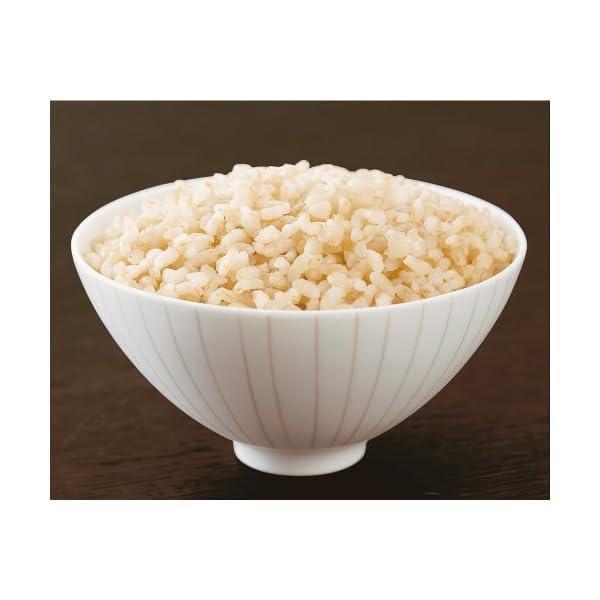 穀民生活 玄米ごはん 160g×10個の紹介画像3