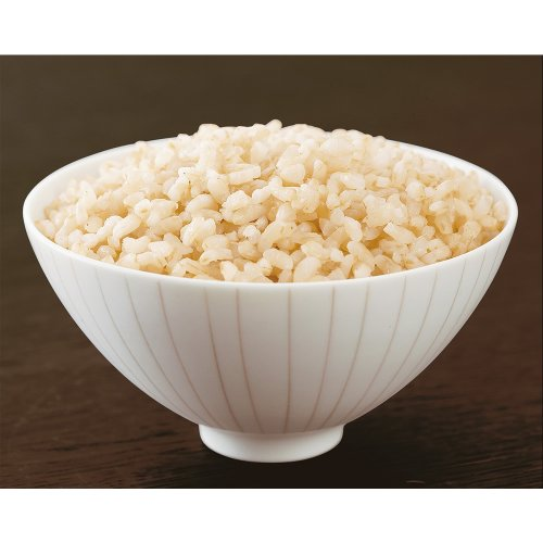 穀民生活 玄米ごはん 160g×10個