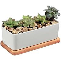 ニヤースさんの店 多肉植物ポット サボテンプランター 排水孔付き花鉢、竹トレイ 白い矩形