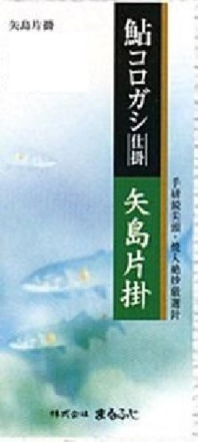 先船上Marufuji(マルフジ) A-13 鮎コロガシ仕掛矢島片掛 11号