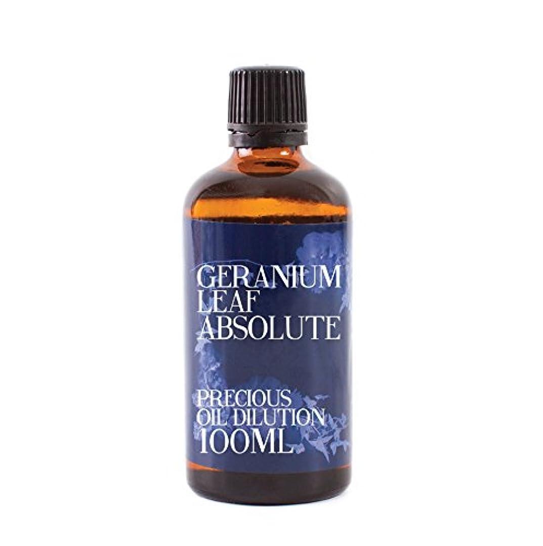 胸弾力性のあるいたずらGeranium Leaf Absolute Oil Dilution - 100ml - 3% Jojoba Blend