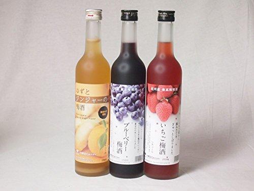 2セット 紀州産南高梅使用フルーツ梅酒3本セット (いちご梅酒 ブルーベリー ゆずとジンジャーの梅酒)500ml×6本