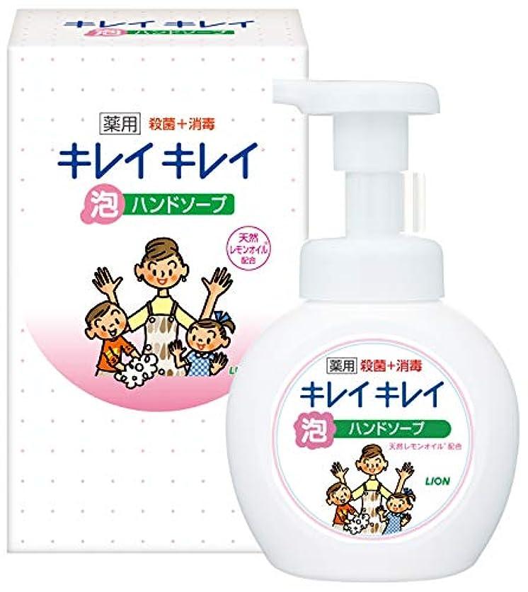 経営者認識馬鹿LION キレイキレイ薬用泡ハンドソープ250ml ノベルティギフト用化粧箱入