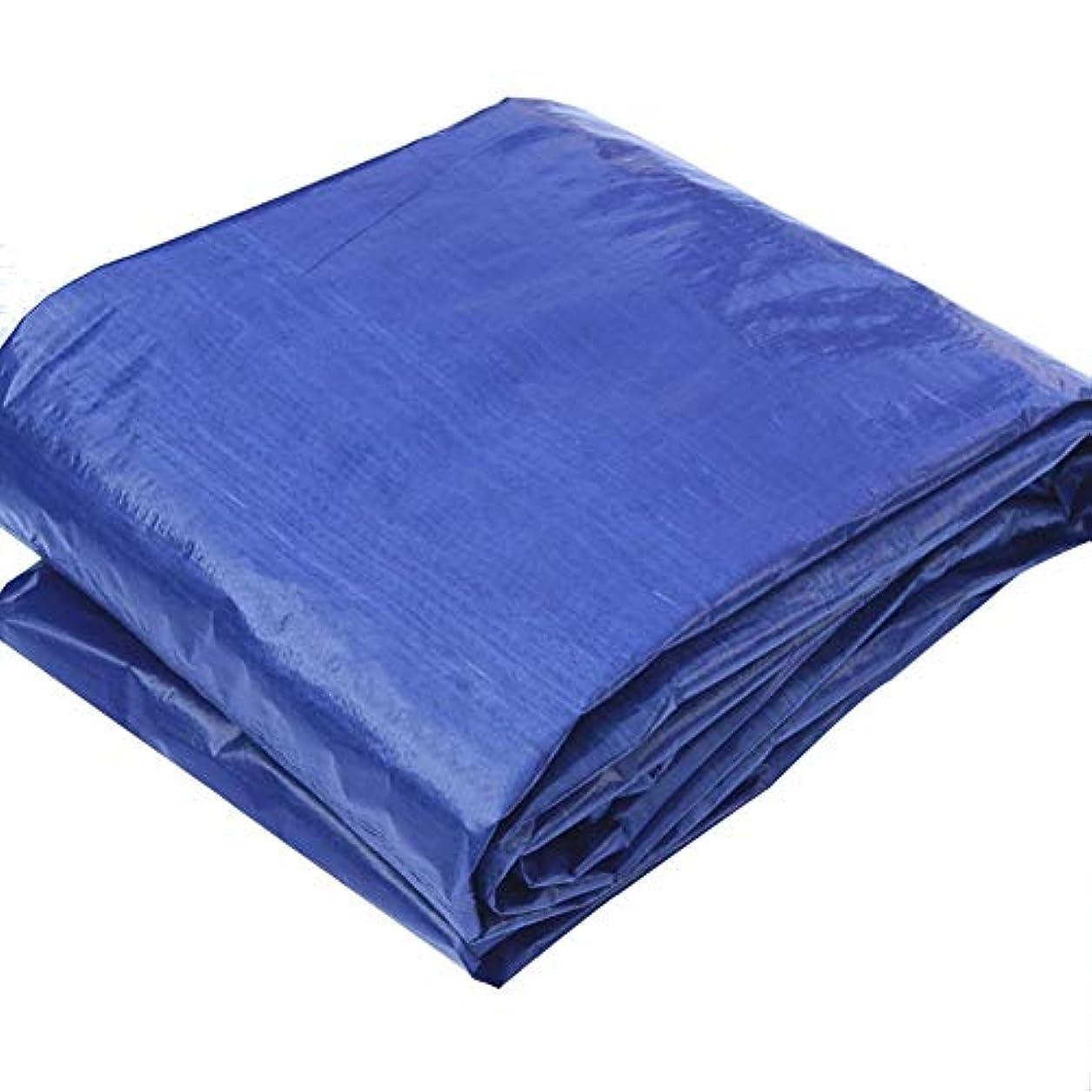 急襲正直塩辛い19-yiruculture 防雨布防水グレーブルー防水シート、プラスチック織物オーニングキャンプマット、屋外シェード防塵防風 (Color : A, サイズ : 4x6M)