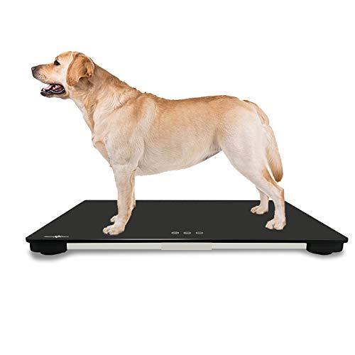 大きな犬の体重計、10gの高精度、大型犬や体重を測定する多くの猫に適しています