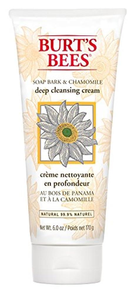 砂漠ライムお金ゴムBurt's Bees Soap Bark and Chamomile Deep Cleansing Creme