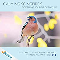 Calming Songbirds - Nature Sounds Recording Of Bird Calls - For Meditation Relaxation and Creating a Soothing Atmosphere - Nature's Perfect White Noise -【CD】 [並行輸入品]
