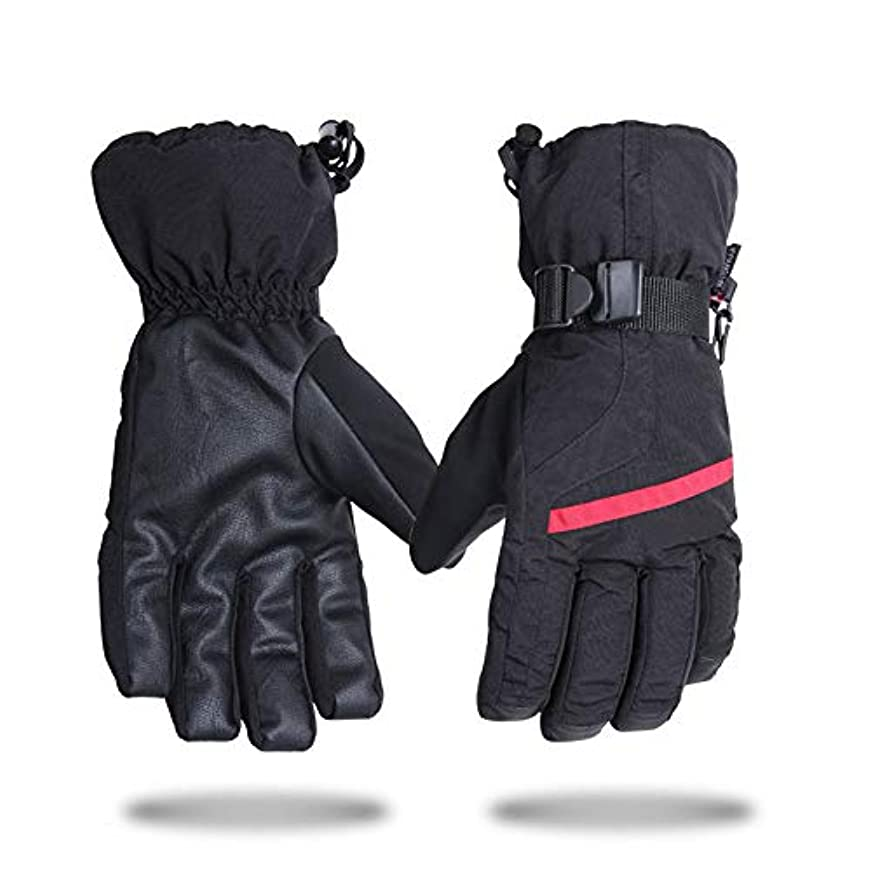 愛するスペア間隔快適 冬スキー手袋防水防風屋外暖かい手袋はすべて、手袋ノンスリップスポーツ手袋を参照してください (サイズ : L)