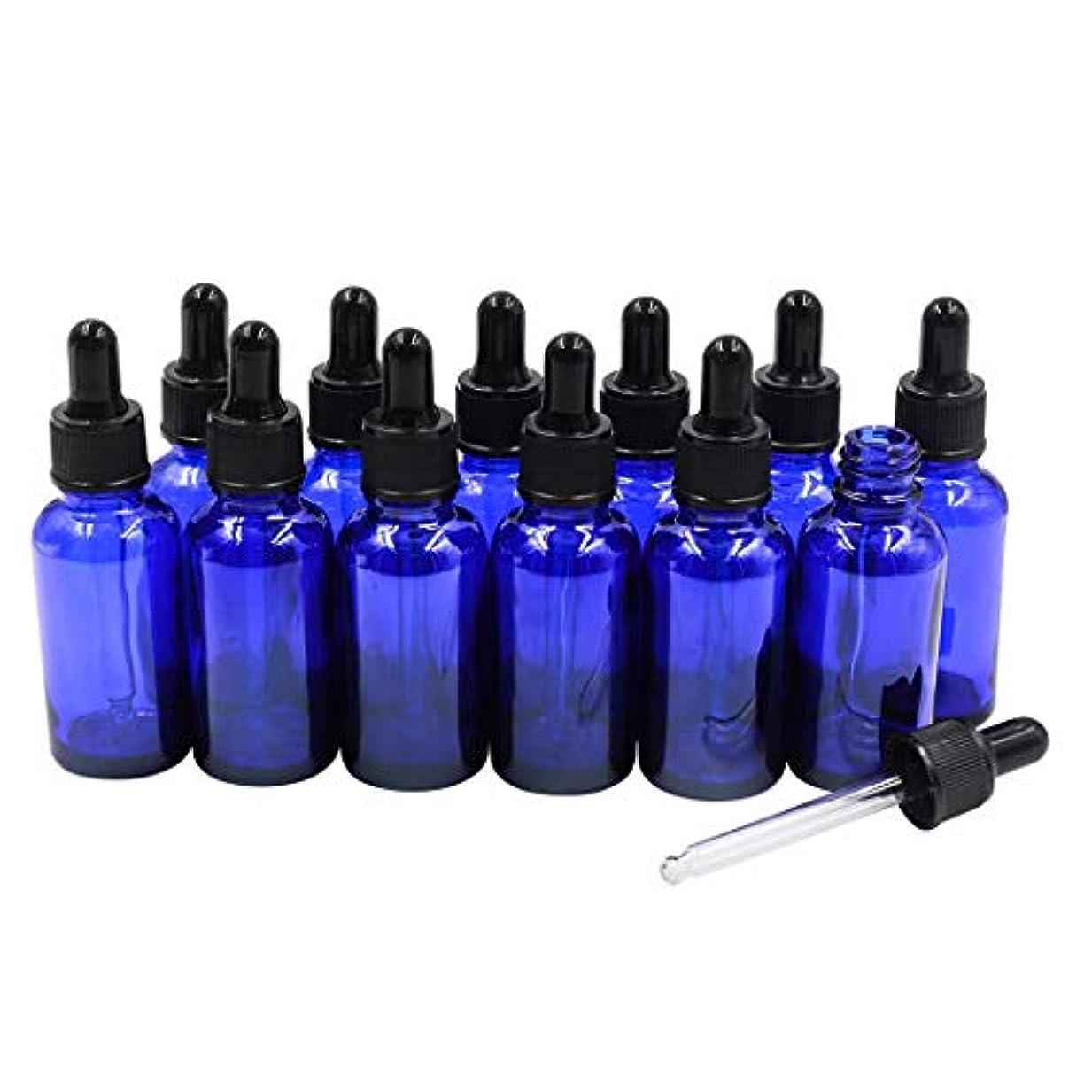 自己尊重コック集団的12本セット ブルースポイト遮光瓶 アロマオイル 精油 香水やアロマの保存 小分け用 遮光瓶