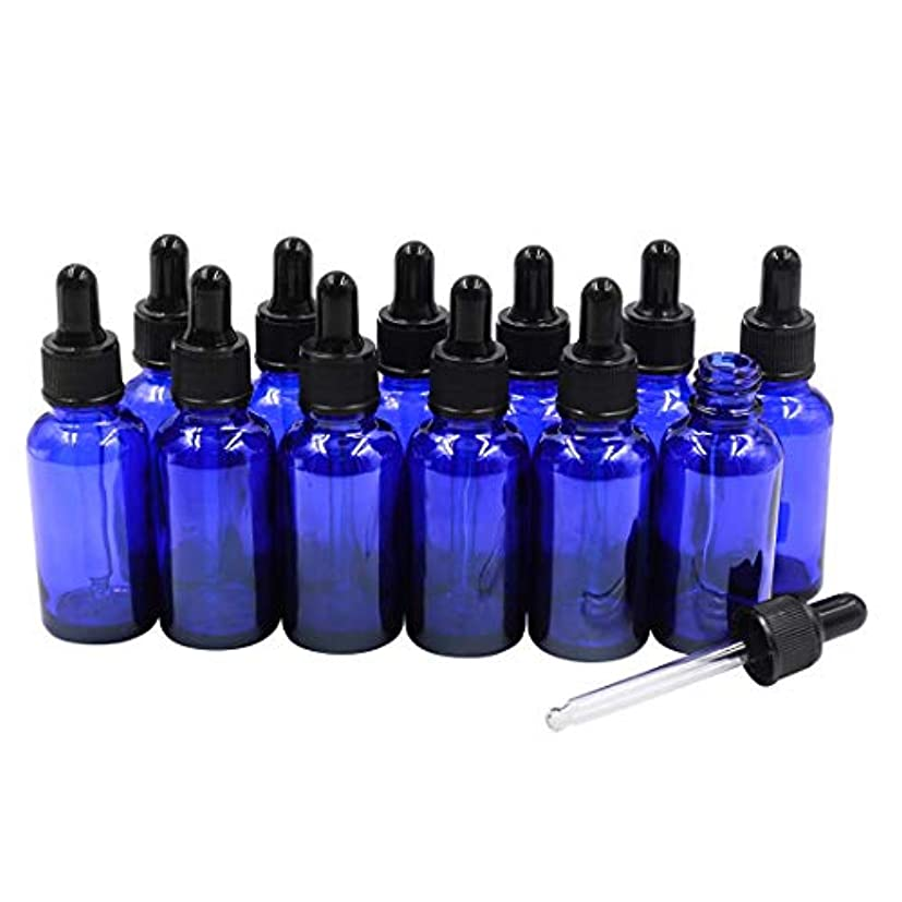 熱意噴出する冊子12本セット ブルースポイト遮光瓶 アロマオイル 精油 香水やアロマの保存 小分け用 遮光瓶